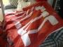 ΕΚΤΥΠΩΣΗ ΦΩΤΟΓΡΑΦΙΑΣ ΣΕ FLAG ΣΗΜΑΙΟΠΑΝΟ ΔΙΑΤΡΗΤΟ